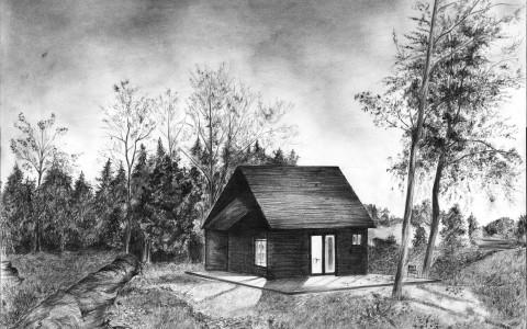 nocny rysunek, drzewa ołówkiem, noc ołówkiem, nocny krajobraz ołówkiem
