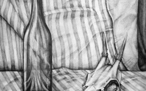 martwa natura ołówkiem, cieniowanie szkła, rysunek czaszki ołówkiem, nauka rysowania martwej natury, rysowanie materiału w paski ołówkiem, różne techniki wykonania martwej natury