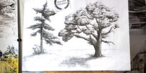 jak rysowac drzewa rysunek krakow park