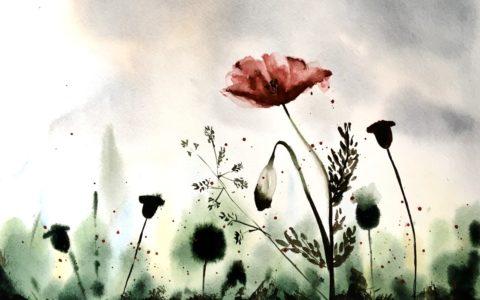 kurs akwareli od podstaw, malowanie kwiatów akwarelą, zajęcia malarskie dla wszystkich grup wiekowych