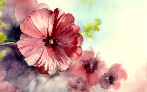 kurs akwareli kraków, warsztaty malarskie od podstaw, obraz kwiat akwarelą