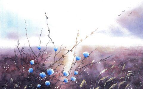 obraz łąki o wschodzie słońca, obrazy akwarelowe, nauka malarstwa akwarelowego od podstaw, najlepszy kurs malarstwa w polsce